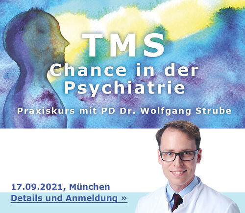 TMS_WS_Strube_Details